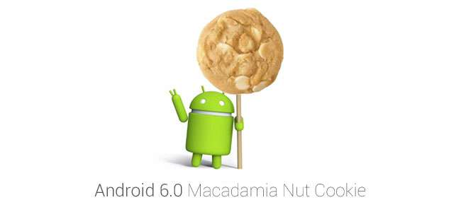 Кодовое имя следующей версии Android  - Macadamia Nut Cookie (MNC)