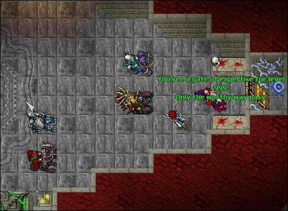 9 лет на прокачку персонажа до 999 уровня, чтобы пройти через дверь