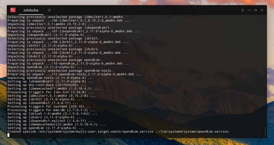 Настройка DKIM-записи для работы сsendmailнасервере сLinux Ubuntu