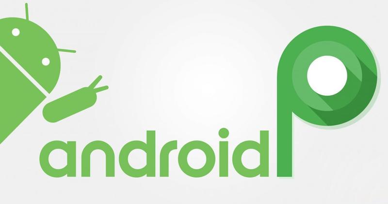 Android Pувидим уже через несколько дней, пока Developer Preview