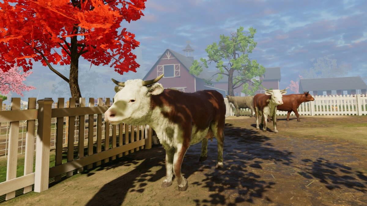 Окунитесь с головой в жизнь фермера с Adventure Farm VR