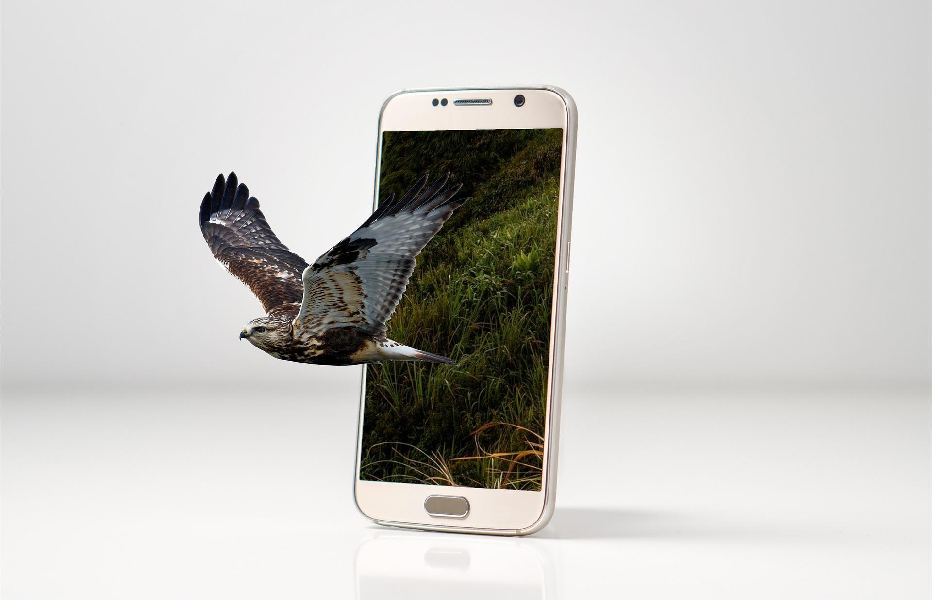 Назван самый покупаемый смартфон года