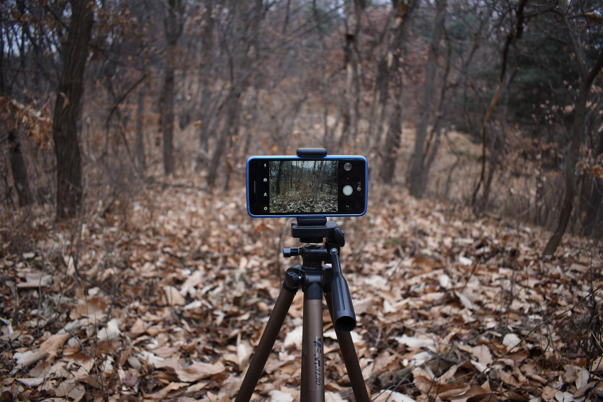 ТОП-8 смартфонов случшими камерами