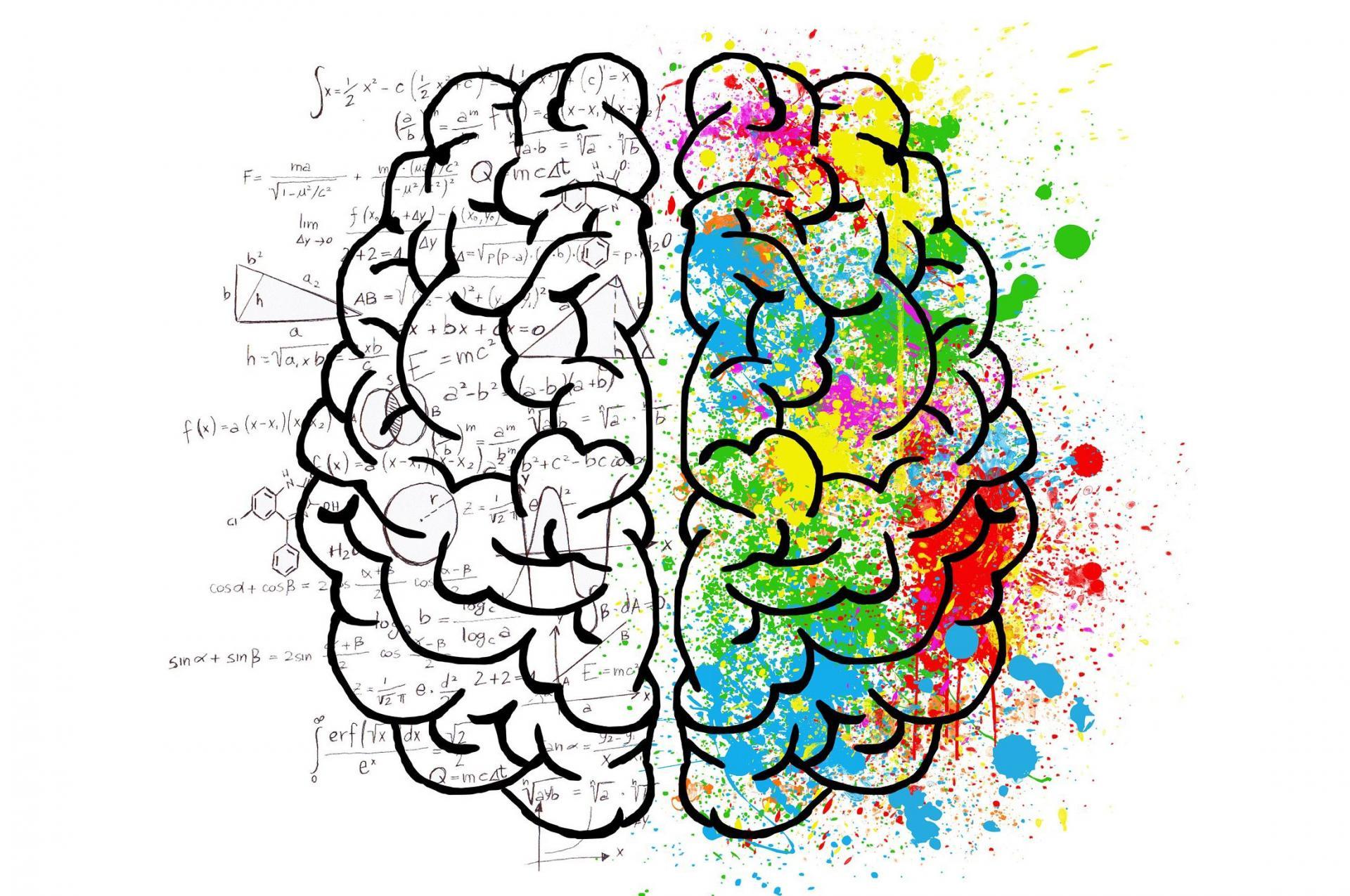 Почему высокий IQне значит, что выумны?