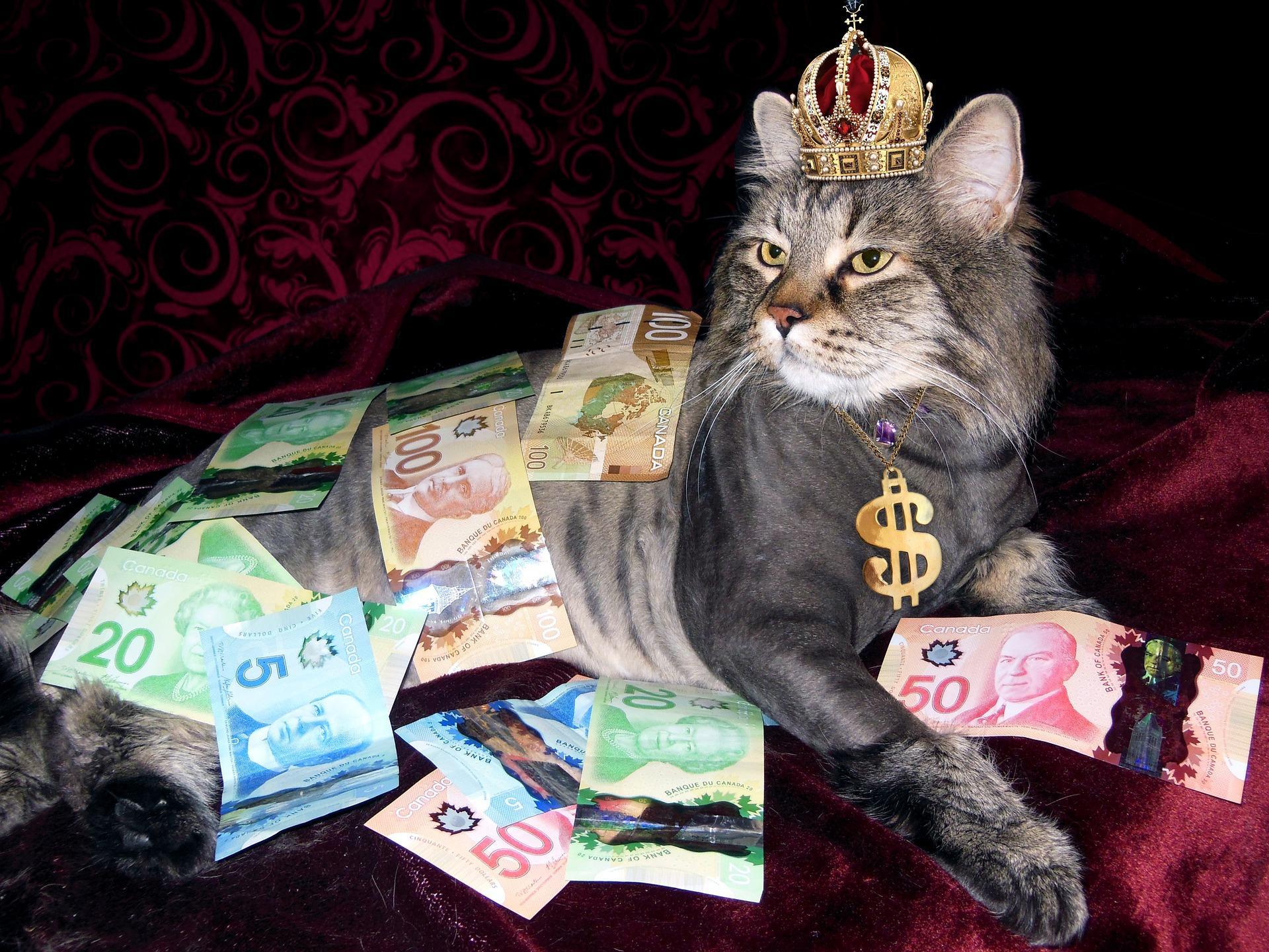 5 правил бытия для привлечения богатства